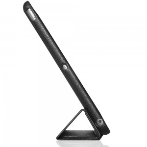 iPad Air Case with Stand